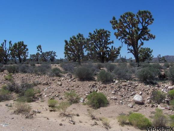 26865 N. Verde Rd., Meadview, AZ 86444 Photo 8
