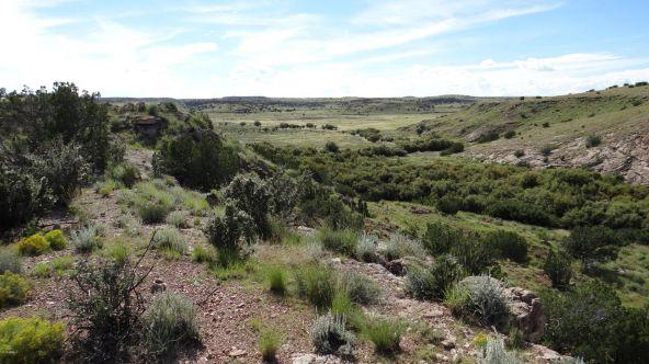 109 River Springs Ranch Unit 3 --, Saint Johns, AZ 85936 Photo 69