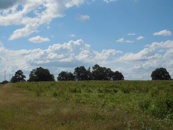 7 Acres Hardy Rd., Rehobeth, AL 36301 Photo 30