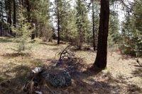 Home for sale: 28 Acre Elk Ridge Rd., Spirit Lake, ID 83869