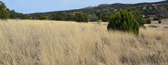 13991 N. Grey Bears Trail, Prescott, AZ 86305 Photo 22