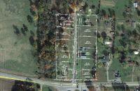 Home for sale: 5 del Ware Ln., Delaware, AR 72835