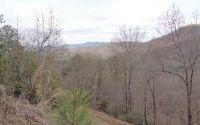 Home for sale: 21 Laurel Mtn Estates, Brasstown, NC 28902