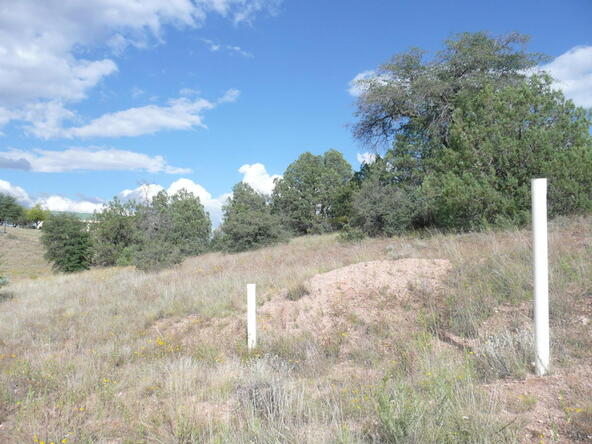 290 N. Navajo Trail, Young, AZ 85554 Photo 21
