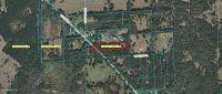 Home for sale: 17335 N. Hwy. 329, Reddick, FL 32686