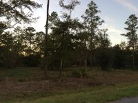 Home for sale: Lot 39 Jamie's. Way, Jesup, GA 31545