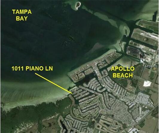 1011 Piano Ln., Apollo Beach, FL 33572 Photo 2