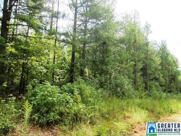 4.17 Acres Thomas Ln., Ashland, AL 36251 Photo 4