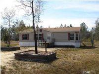 Home for sale: 10730 Sanjo Rd., Fountain, FL 32438