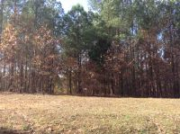 Home for sale: Lot 7 Sand Rd., Enville, TN 38332