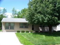 Home for sale: 404 Meadow Cir., Saint Joseph, IL 61873