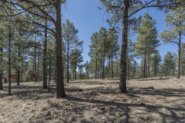 2431 E. del Rae Dr. #181, Flagstaff, AZ 86001 Photo 5