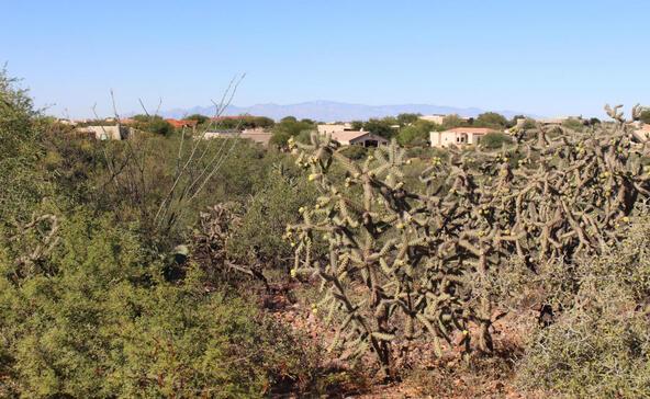 973 E. Sylvester Spring, Green Valley, AZ 85614 Photo 13