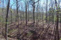 Home for sale: Green Forest, AR 72638
