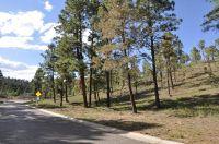 Home for sale: 106 Charles Mcclellan Dr., Ruidoso, NM 88345