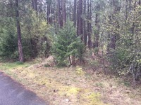 Home for sale: Tbd Lot 2 Minter Blvd., Marcus, WA 99151