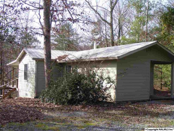 9416 County Rd. 103, Mentone, AL 35984 Photo 27
