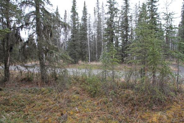 47465 Augusta National Rd., Kenai, AK 99611 Photo 4