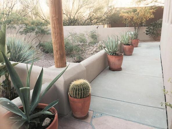 3098 N. Fennimore, Tucson, AZ 85749 Photo 16