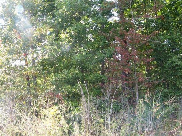1111 Holly Grove Rd., Keavy, KY 40741 Photo 5