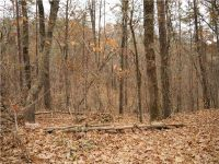 Home for sale: 0 Pecks Mill Creek Rd., Dahlonega, GA 30533