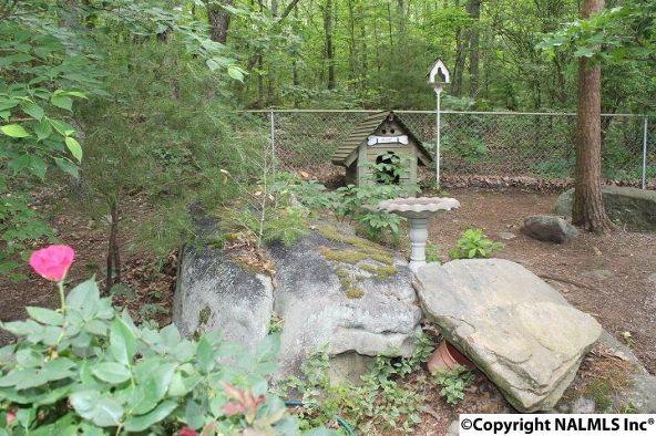 21432 Scenic Dr., Mentone, AL 35984 Photo 25