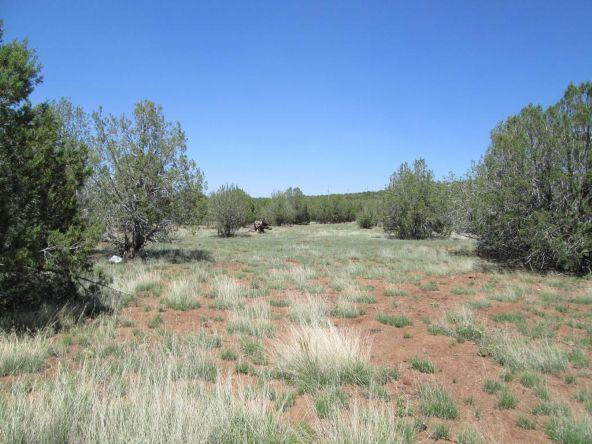 3328 N. Hillside Rd., Ash Fork, AZ 86320 Photo 45