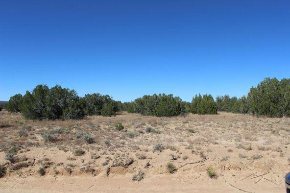 7209 N. Hwy. 191 --, Sanders, AZ 86512 Photo 13