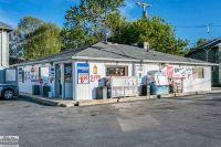 Home for sale: 1236 Water, Port Huron, MI 48060
