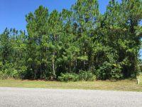 Home for sale: 239 North Prairie Lakes Blvd., Saint Augustine, FL 32084