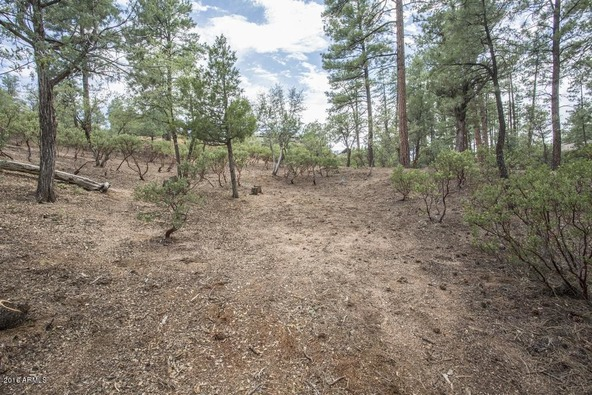 2406 E. Indian Pink Cir., Payson, AZ 85541 Photo 9