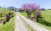 Home for sale: 1400 Sawmill Rd., Highlandville, MO 65669