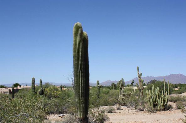 7643 N. Ironwood Dr., Paradise Valley, AZ 85253 Photo 6