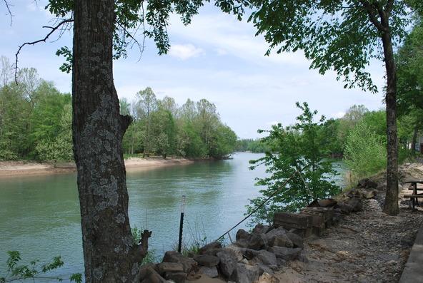 520 Sandy Trail, Biggers, AR 72413 Photo 4