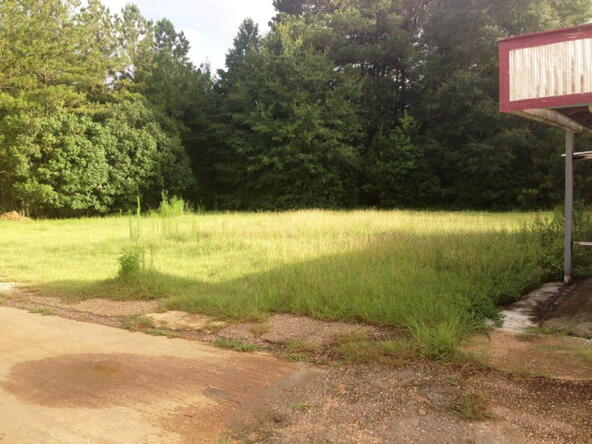 12204 South Us 231, Midland City, AL 36350 Photo 11