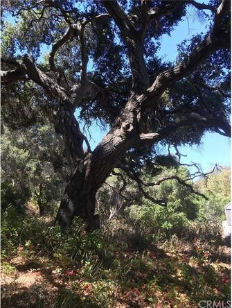 2171 San Luis Dr., San Luis Obispo, CA 93401 Photo 3