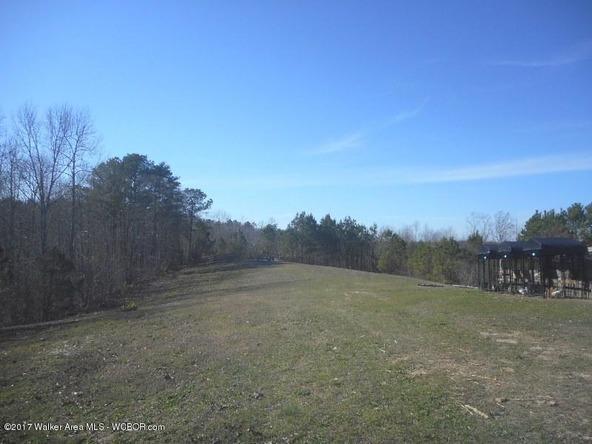 978 Tucker Cemetery Rd., Eldridge, AL 35554 Photo 86