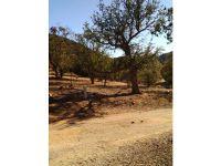 Home for sale: Dewey, Caliente, CA 93518