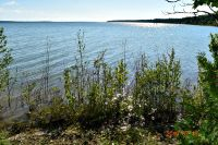 Home for sale: 00 Indian Point Rd., Beaver Island, MI 49720