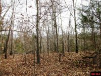 Home for sale: Green Forest Trail, Mountain Home, AR 72653