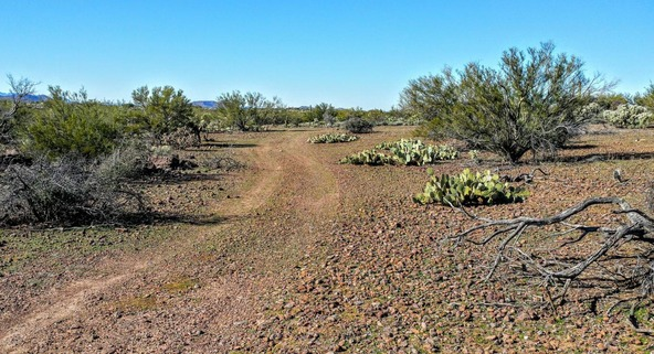 47495 Blk E. Rainwater, Tucson, AZ 85739 Photo 19