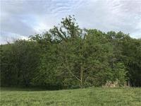 Home for sale: 8335 Frederick Ct., De Soto, KS 66018