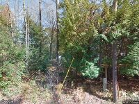 Home for sale: Schroon River Rd., Chester, NY 12801