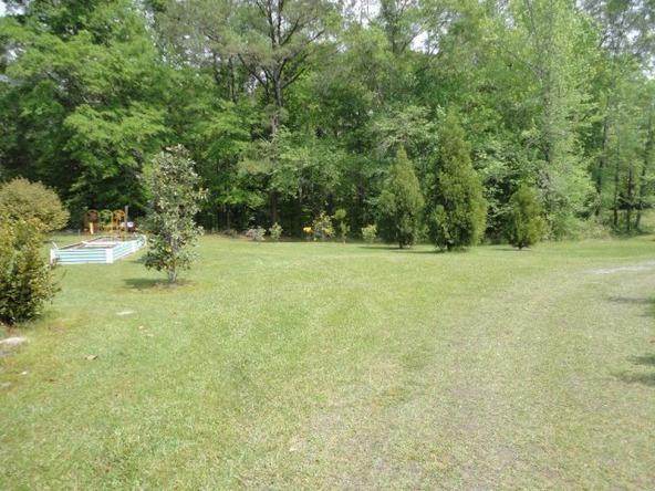 5253 Hwy. 431 N., Pittsview, AL 36871 Photo 23