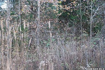 00 Roby Rd., Jacks Creek, TN 38347 Photo 15