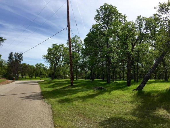 4.21 Ac Norbus Rd., Red Bluff, CA 96080 Photo 4