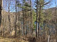 Home for sale: 287 Shoreline Dr., Tuckasegee, NC 28783