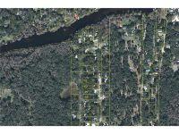 Home for sale: Cr 417, Lake Panasoffkee, FL 33538