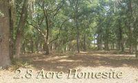 Home for sale: 8766 Palmetto Rd., Edisto Island, SC 29438
