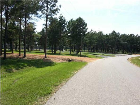 2043 Robinson Pond Rd., Prattville, AL 36067 Photo 5